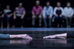 """Tempo do Corpo"" no Teatro Rivoli, Porto"