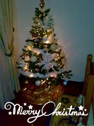 árvore de natal.jpg