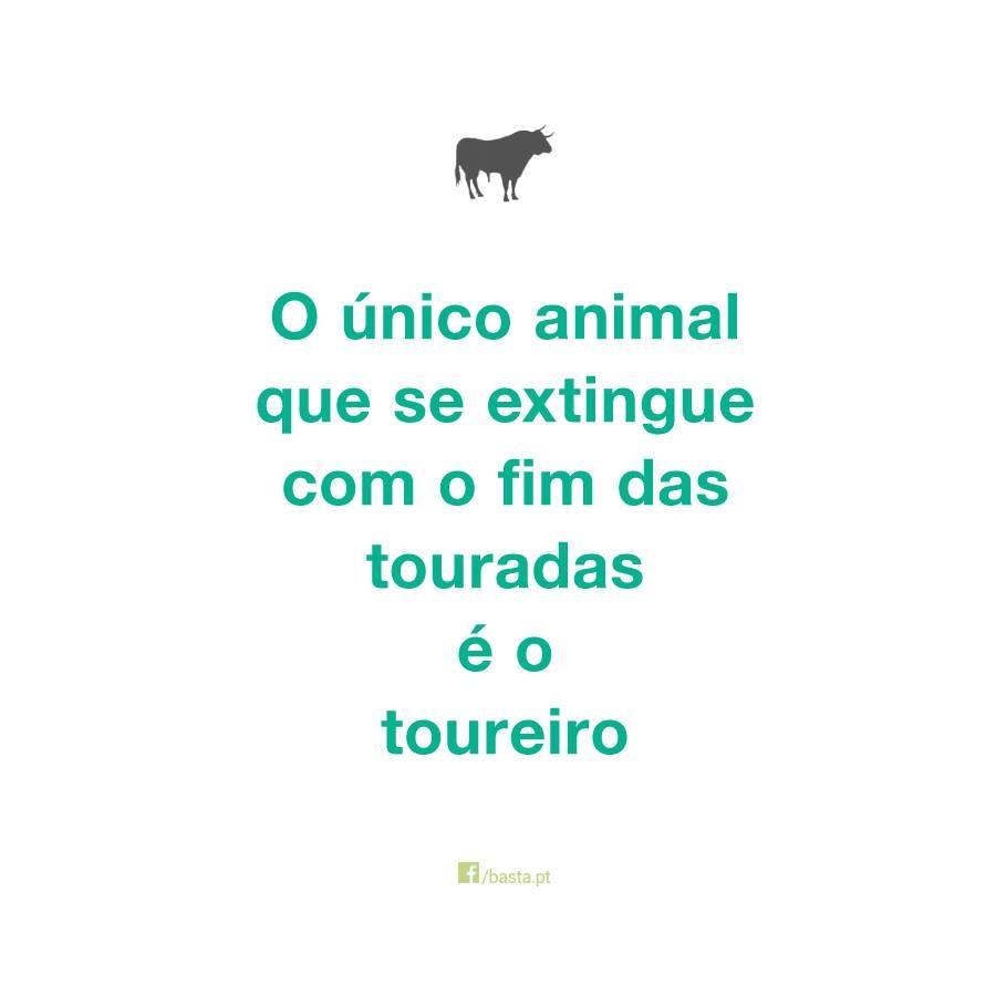 ÚNICO ANIMAL.jpg
