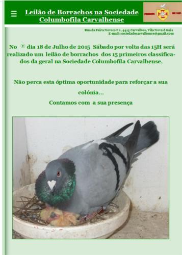 Leilão Carvalhense.jpg