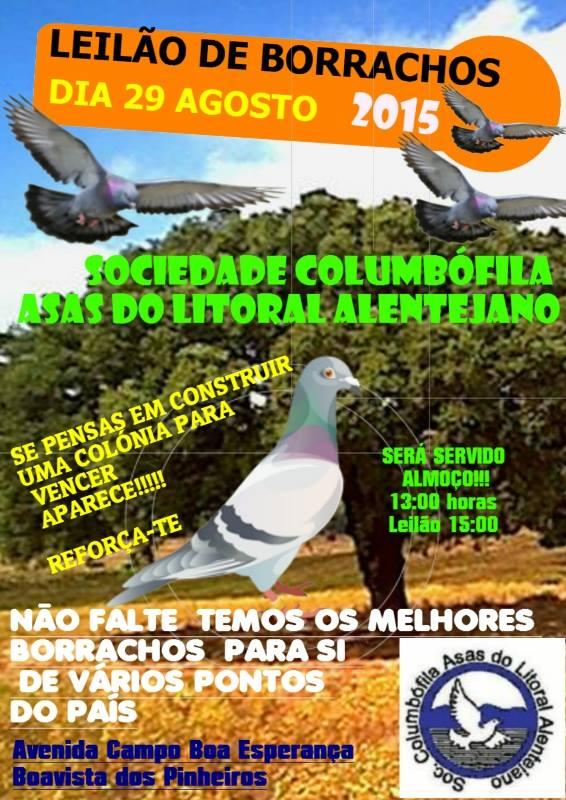 Leilão Asas do Litoral.jpg