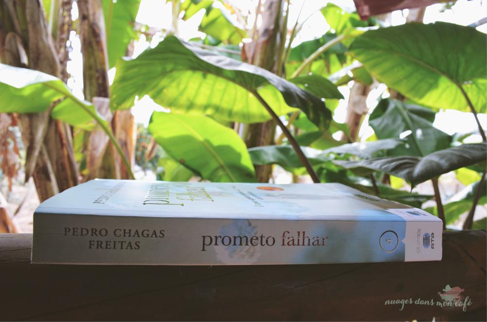 prometo_falhar2.jpg