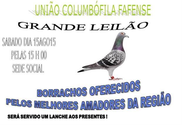 Leilão Fafense.jpg