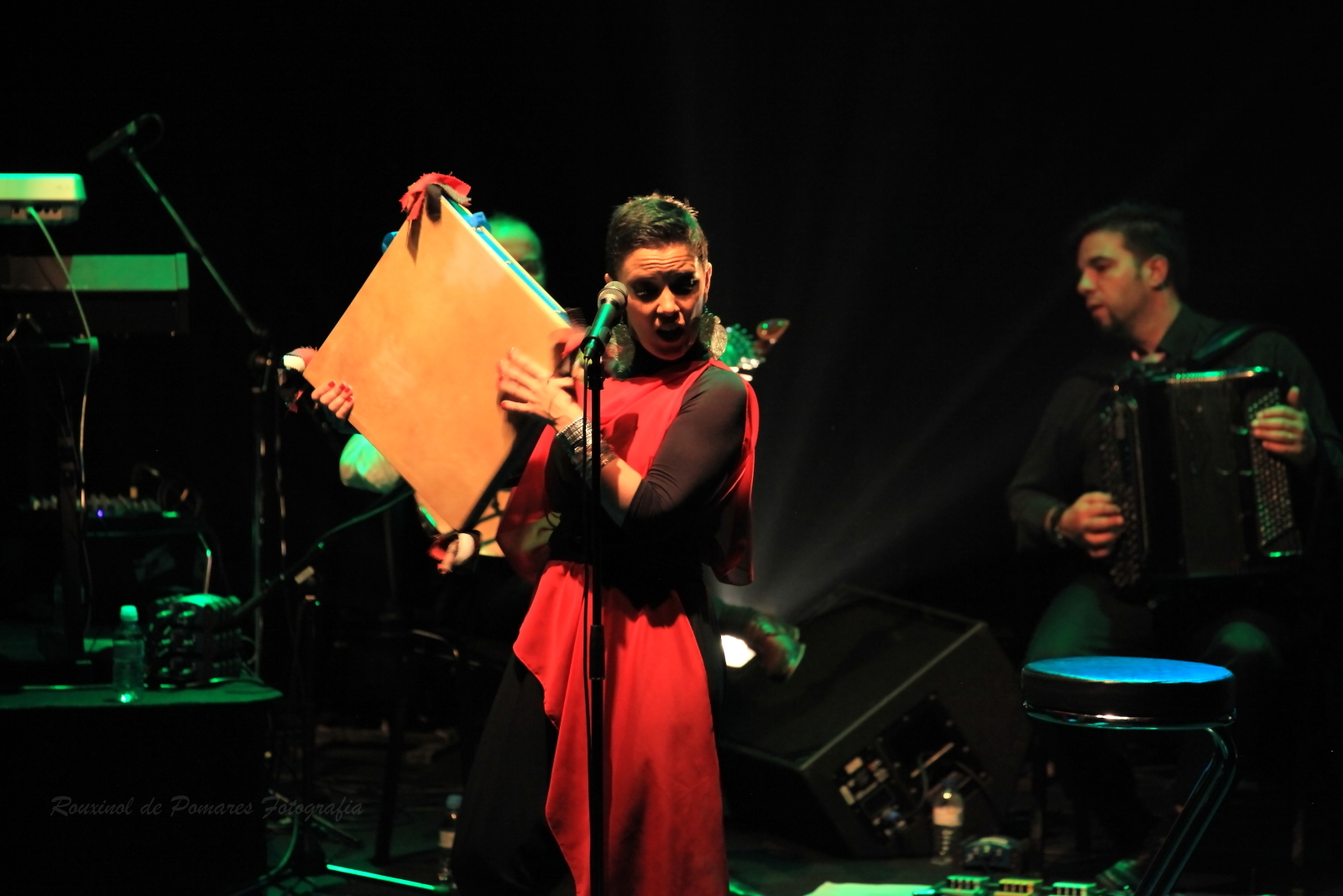 Concerto Ana Laíns Olga Cadaval (001)